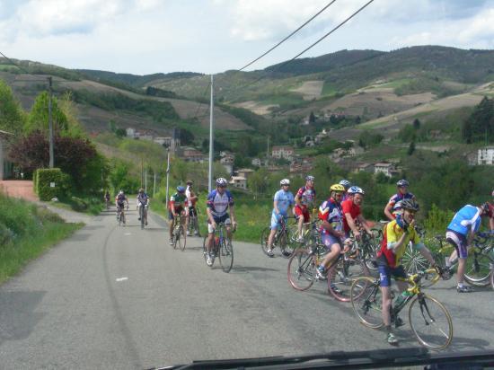 2008 Beaujolais - Lyonnais